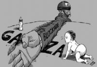 Gaza: A Refugee's Perspective