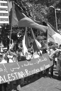 Visions – Missions – Strategies: Can Palestinian NGOs Make a Difference?